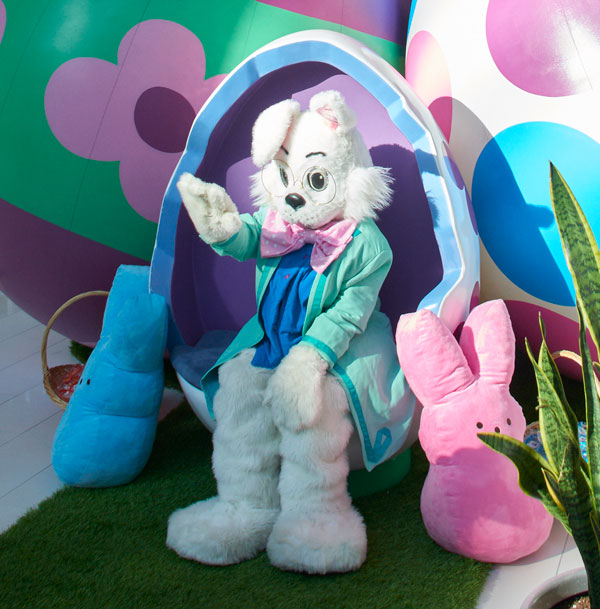 Photos with Easter Bunny at Mall of America