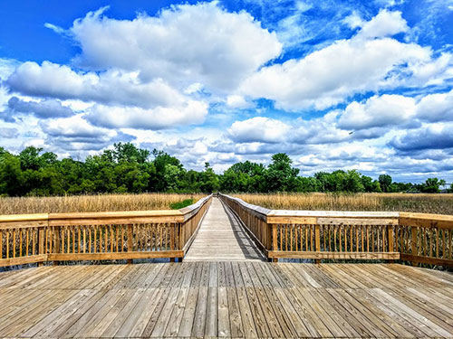 Minnesota Valley Wildlife Refuge Wooden Bridge