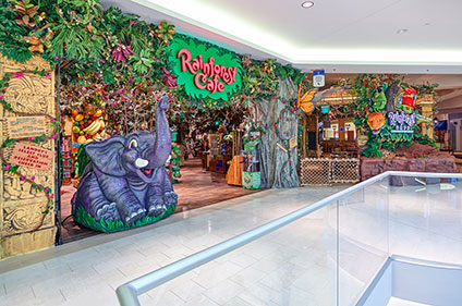 Rainforest Cafe Downtown Disney World Phone Number